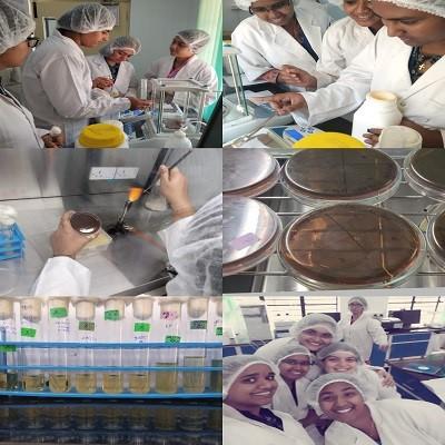 Biozeen 4